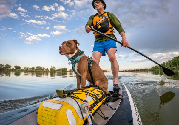 Man and his dog paddle-boarding